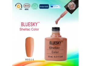 Shellac BLUESKY, № 80514