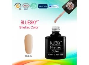 Shellac BLUESKY, № 80567