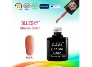 Shellac BLUESKY, № 80571